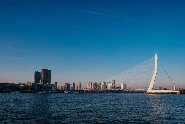 Kiwi The Explorer Rotterdam