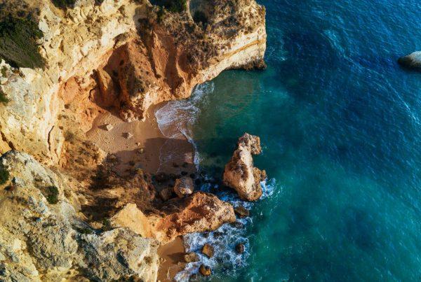 Kiwi The Explorer Portogallo In Macchina 3