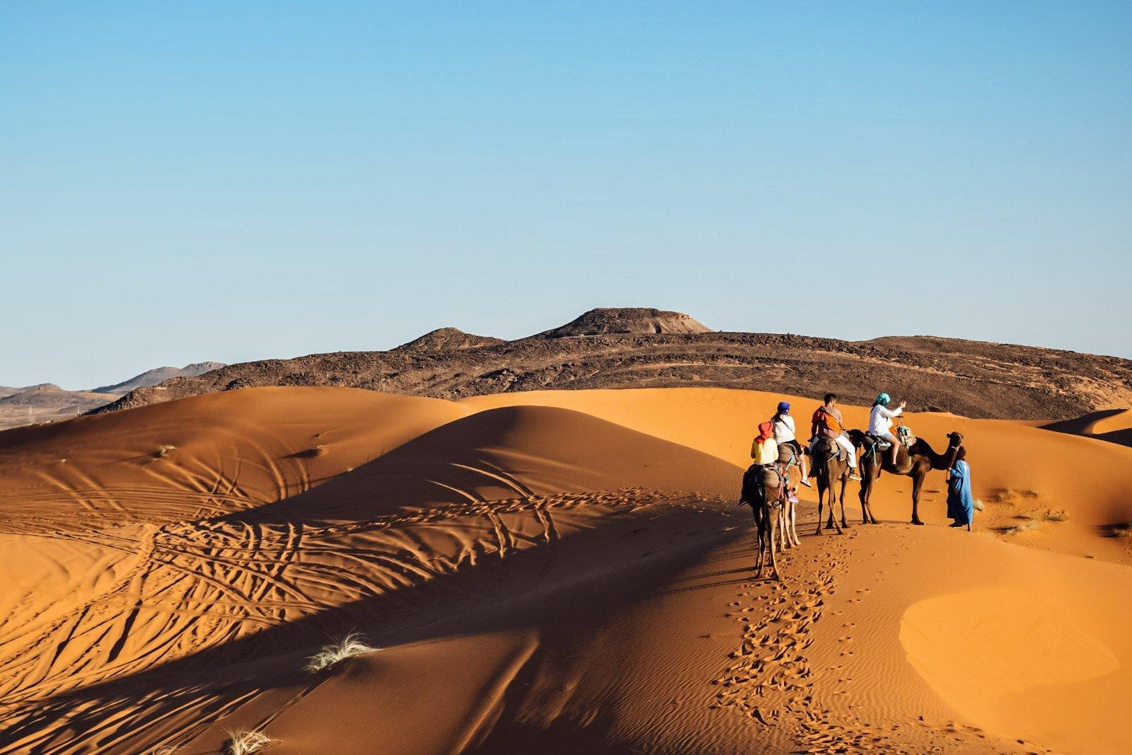 Kiwi The Explorer Beatrice Bono Marrakech Cosa Vedere 15