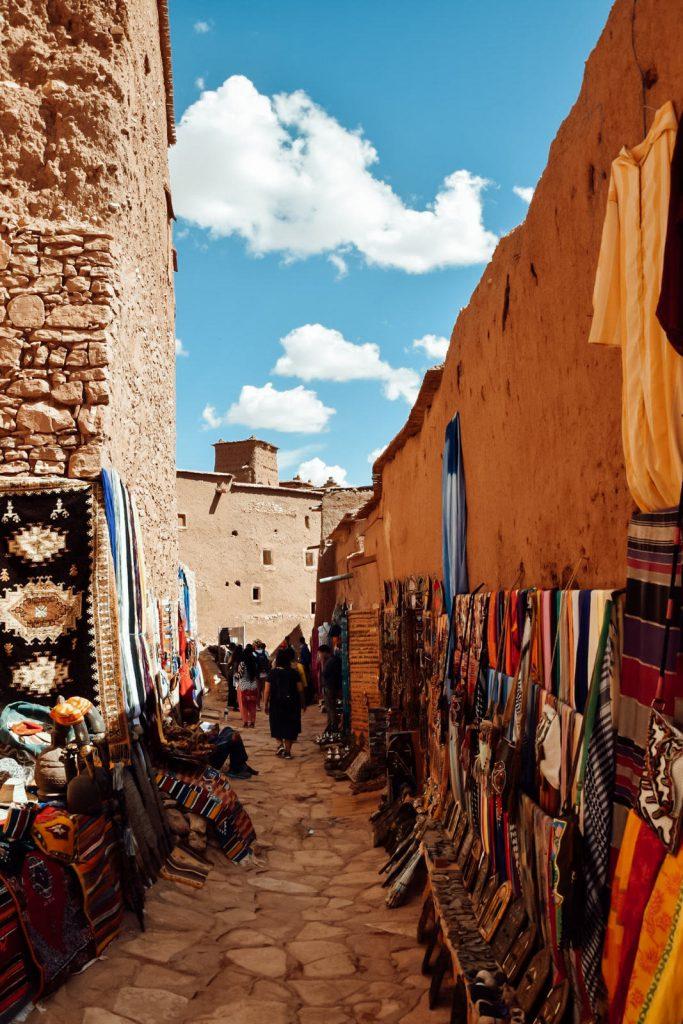 Kiwi The Explorer Beatrice Bono Marrakech Cosa Vedere 21