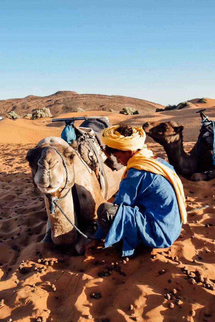 Kiwi The Explorer Beatrice Bono Marrakech Cosa Vedere 38
