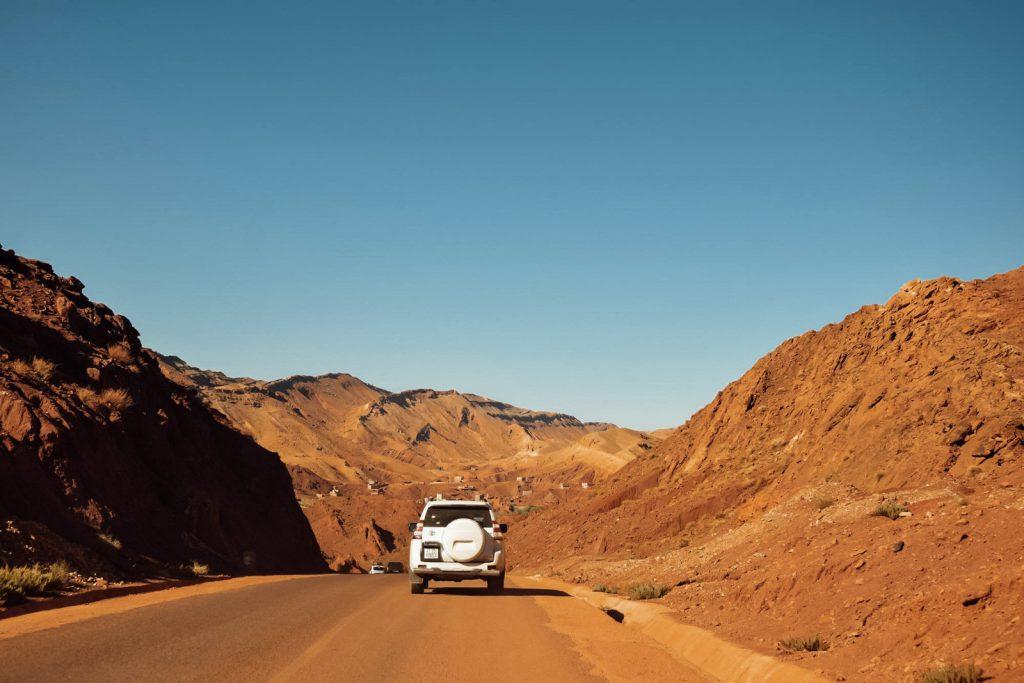 Kiwi The Explorer Beatrice Bono Marrakech Cosa Vedere 39