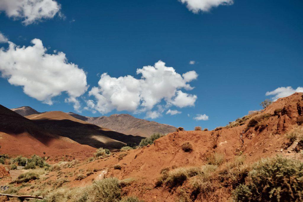 Kiwi The Explorer Beatrice Bono Marrakech Cosa Vedere 43