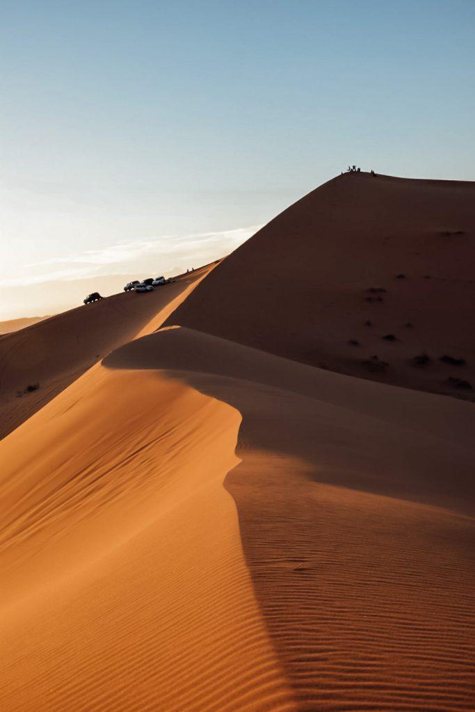 Kiwi The Explorer Beatrice Bono Marrakech Cosa Vedere 44