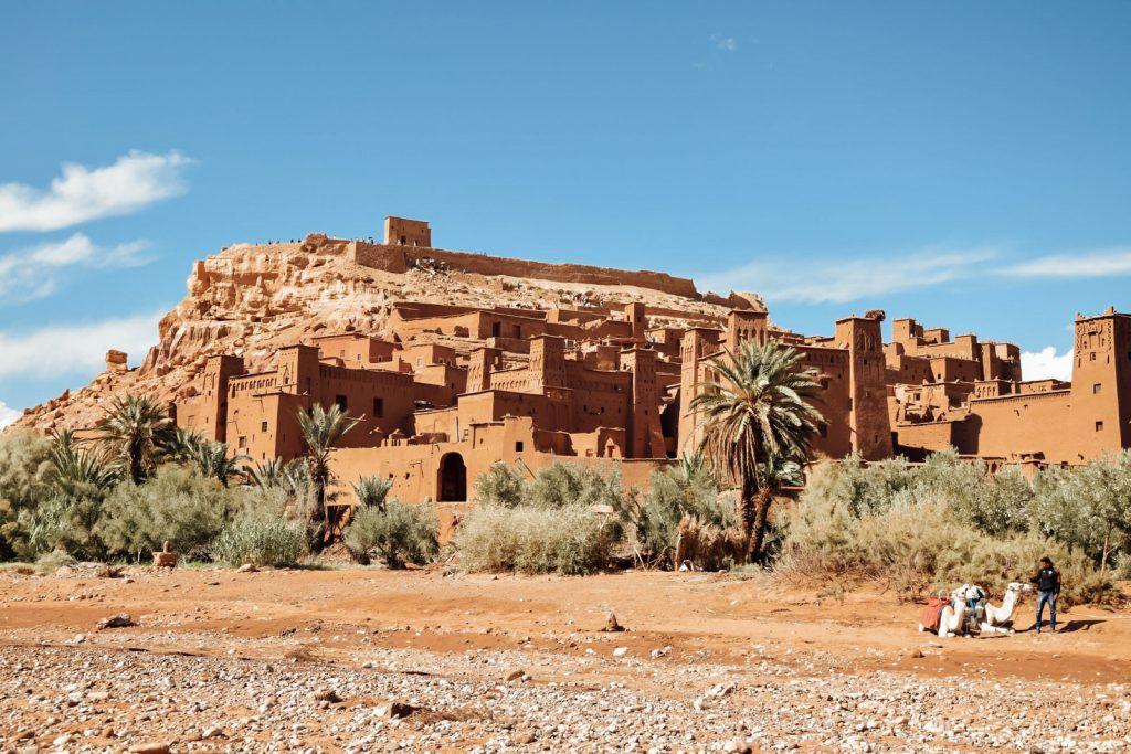 Kiwi The Explorer Beatrice Bono Marrakech Cosa Vedere 8