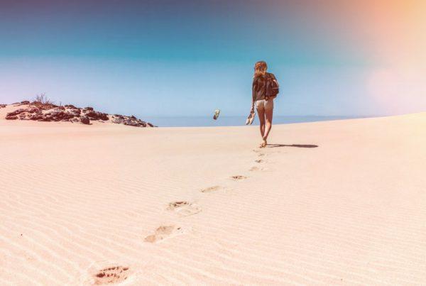 Kiwi The Explorer Fuerteventura Isola Africana E Tropicale In Europa 18
