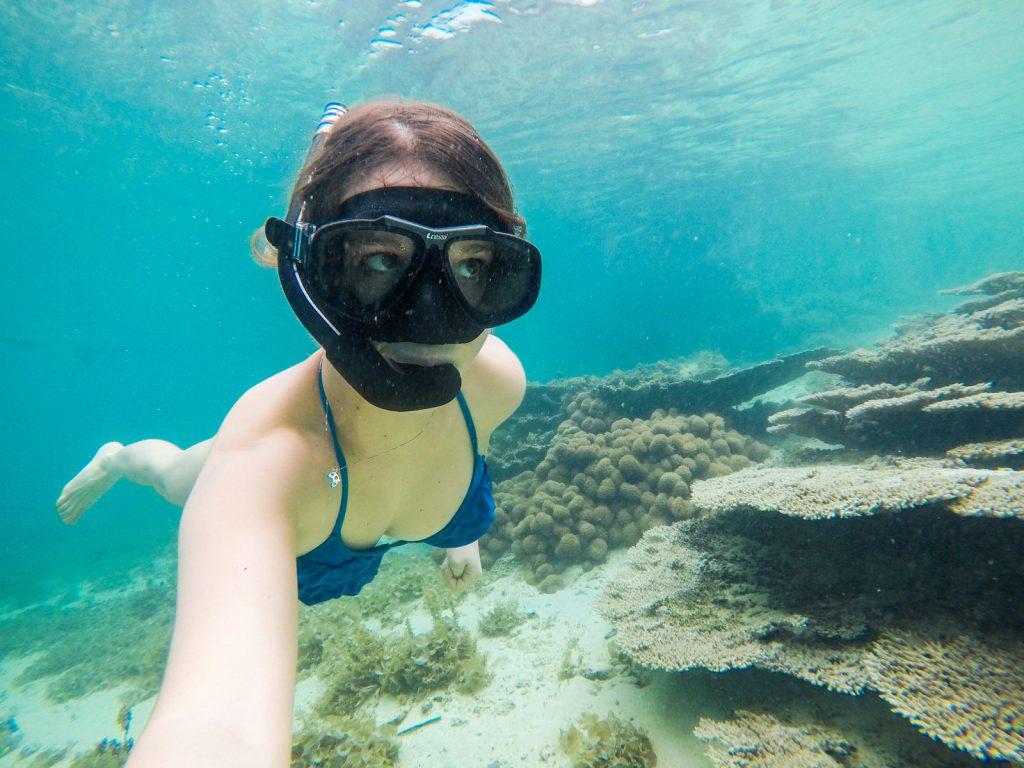 Kiwi The Explorer Mauritius Quando Andare 10