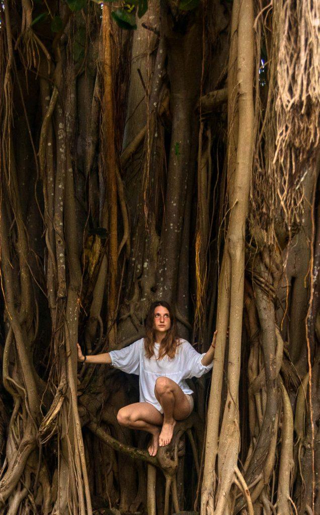 Kiwi The Explorer Mauritius Quando Andare 14