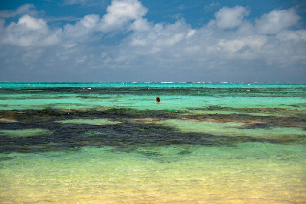 Kiwi The Explorer Mauritius Quando Andare 15