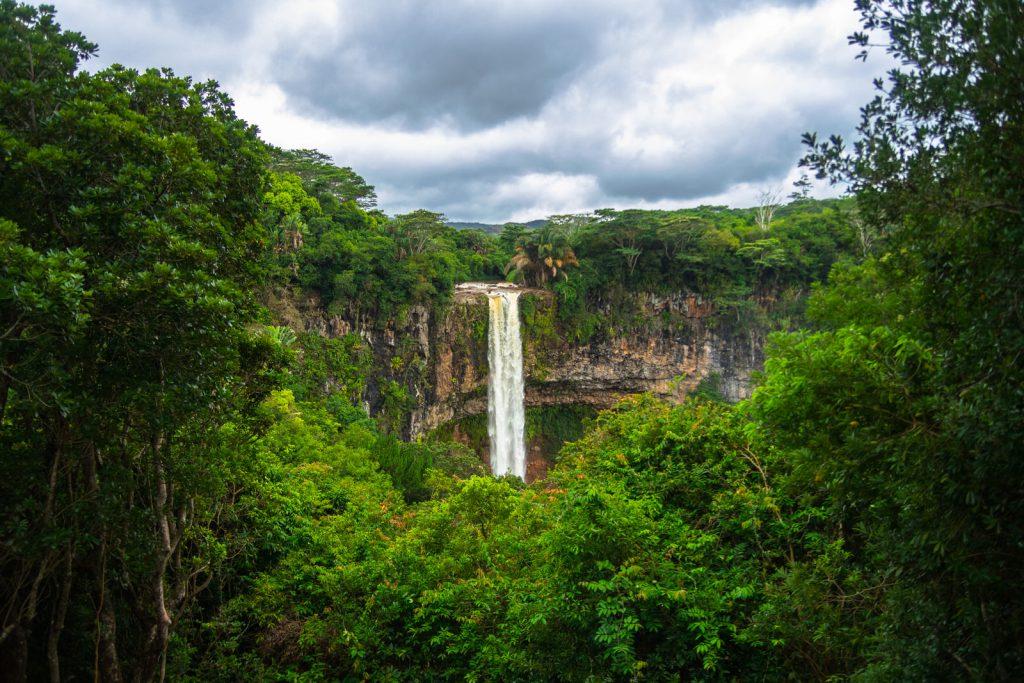 Kiwi The Explorer Mauritius Quando Andare 19