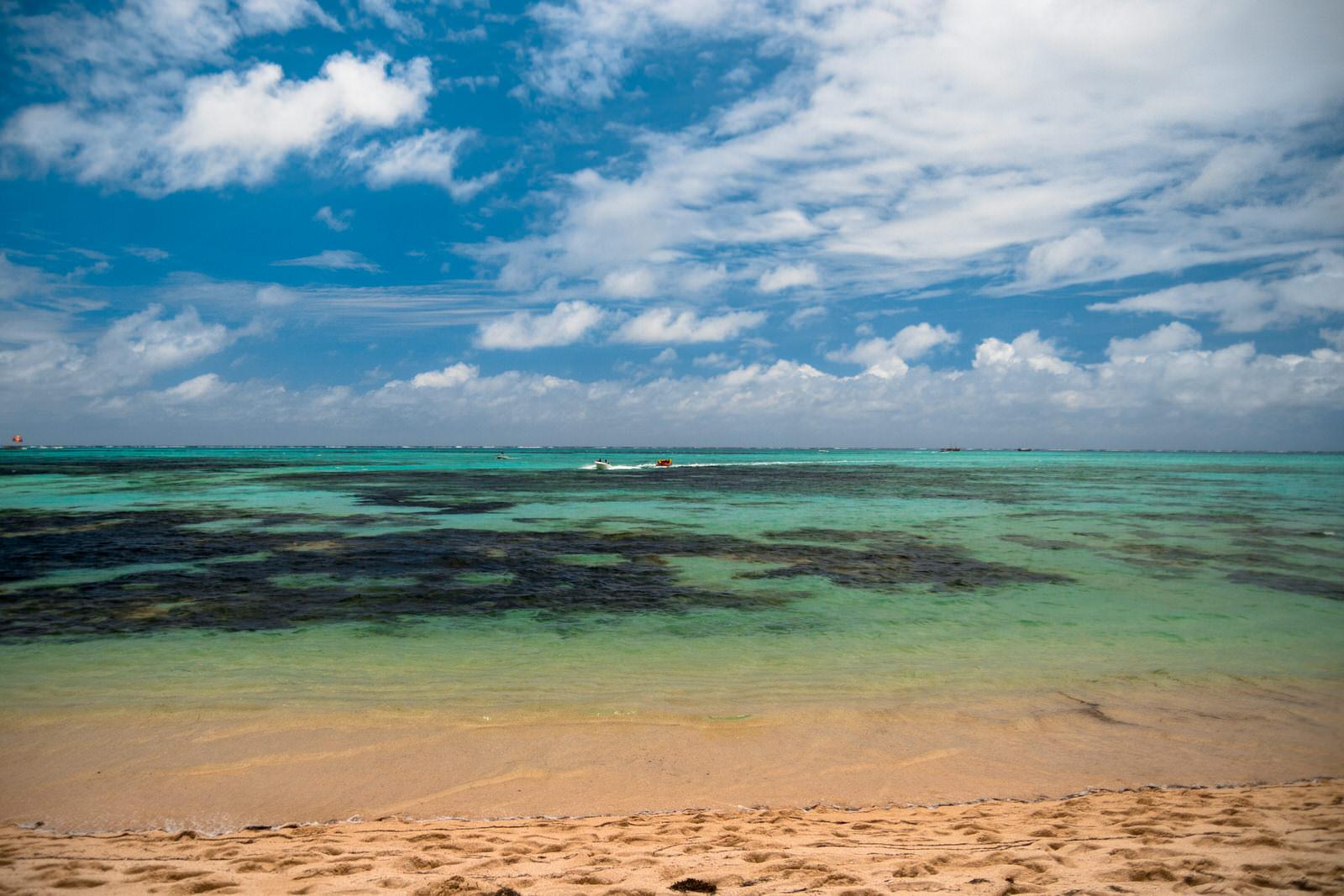 Kiwi The Explorer Mauritius Quando Andare 2