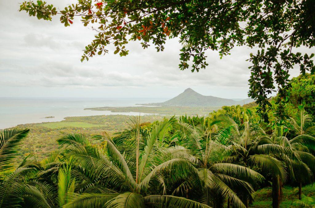 Kiwi The Explorer Mauritius Quando Andare 5