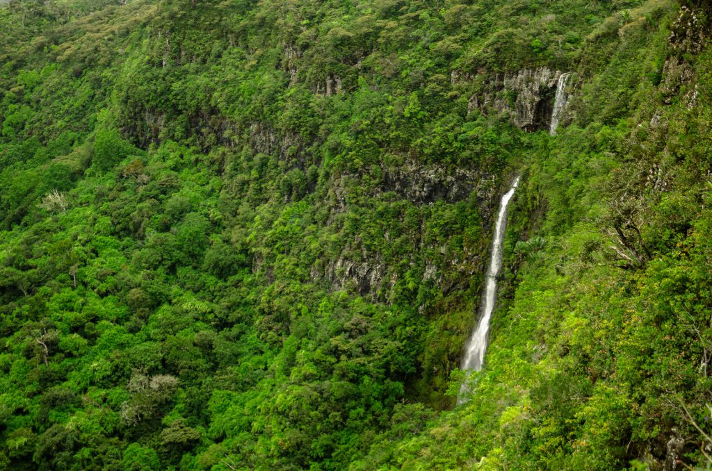 Kiwi The Explorer Mauritius Quando Andare 7
