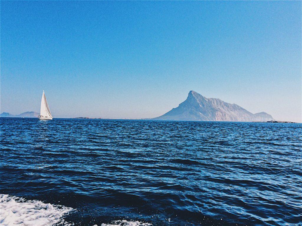 Kiwi The Explorer Mediterraneo Mare Da Sogno 17