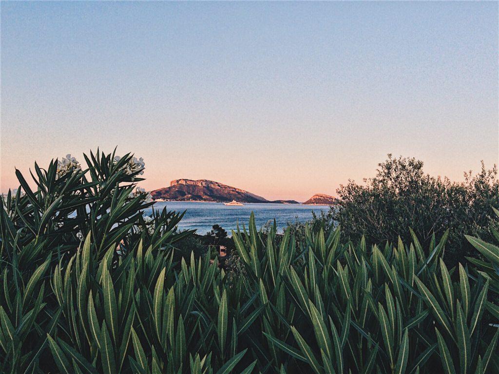 Kiwi The Explorer Mediterraneo Mare Da Sogno 18