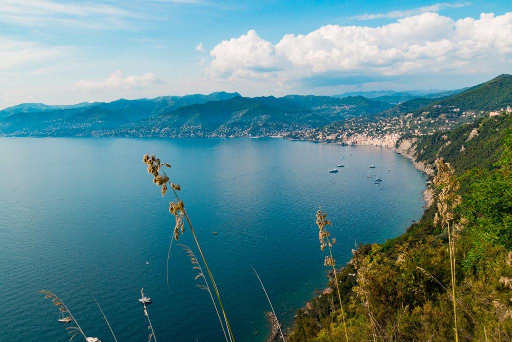 Kiwi The Explorer Mediterraneo Mare Da Sogno 25