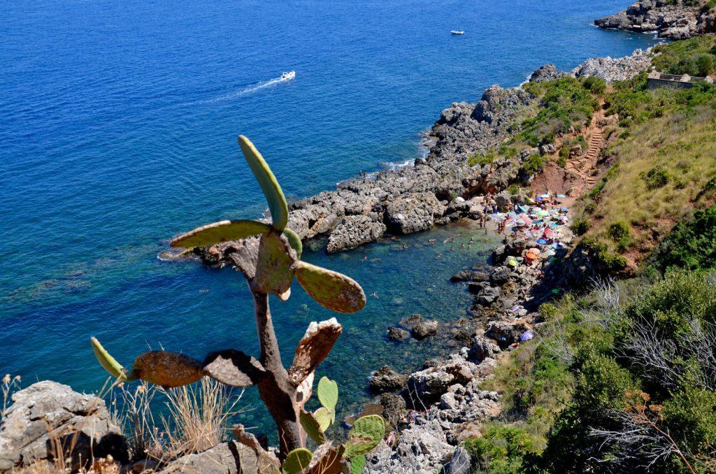 Kiwi The Explorer Mediterraneo Mare Da Sogno 40