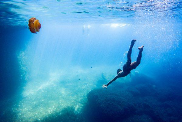 Kiwi The Explorer Mediterraneo Mare Da Sogno 59