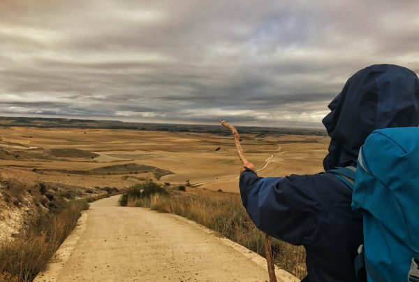 Cammino Di Santiago Kiwi The Explorer 4