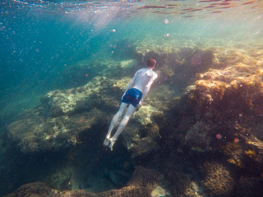 Kiwi The Explorer Turismo Sostenibile Plastic Free 4 1100x825