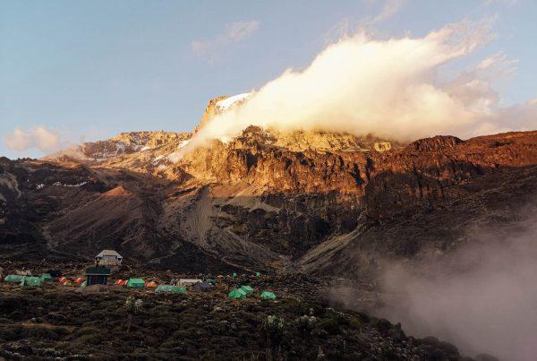 Kilimangiaro Marco Kiwi The Explorer